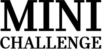 Sponsor Mini Challenge